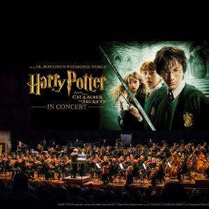 Harry Potter concierto