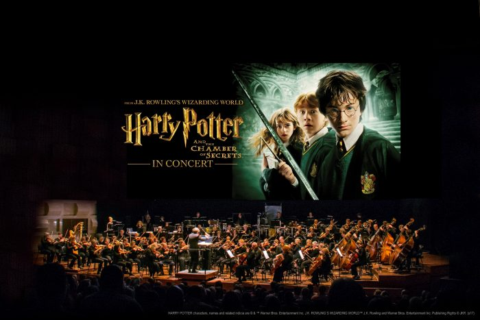 Harry Potter concierto